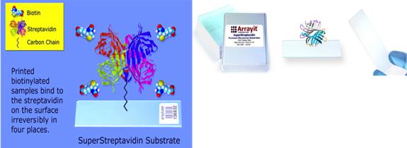 arrayit_superstreptavidin